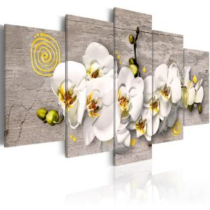Obraz - Sunny orchids - 5 pieces